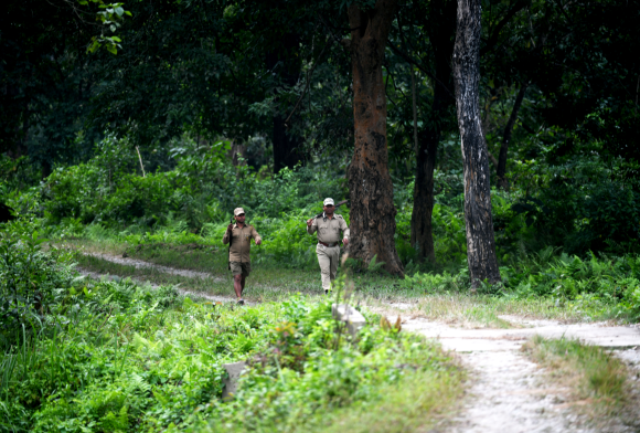 How COVID-19 has Impacted India's Protected Areas