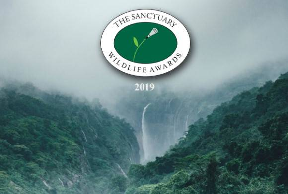 Sanctuary Wildlife Awards 2019