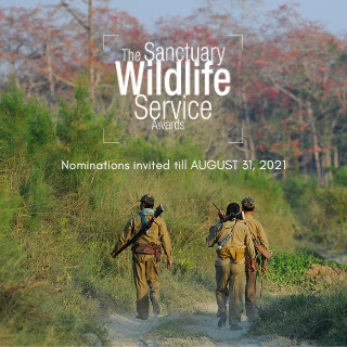 Sanctuary Wildlife Service Awards 2021